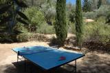 Table Tennis0