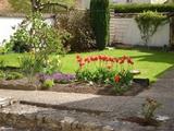 10-Back Garden.jpg0