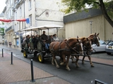 16-A Horse-drawn Guided Tour of Saumur.jpg0