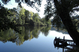 Dordogne river - This might look like the most idyllic looking peaceful lake in the world - its actually part of the famous Dordogne river. Something you MUST do is to park your car at Argentat, find the company ADN canoe hire and spend a few hours meandering downstream. ADN will collect you at a designated point when you are ready. They will then bring you straight back to your car.  It is truly an experience not to be missed but don't forget the suncream!!