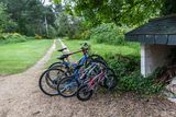 A small selection from the extensive collection of bikes that are available for guests to use free0