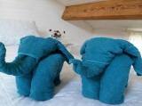 Les serviettes sont fournies et vous accueillir en bonne humeur!