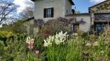 Charming farmhouse cottage