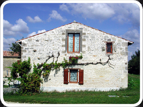 Holiday Rental Gite in St Pierre D`Amilly, Charente-Maritime, France ~ POPPIES