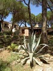 Villa in the woods above Ste Maxime with views of the bay of St Tropez
