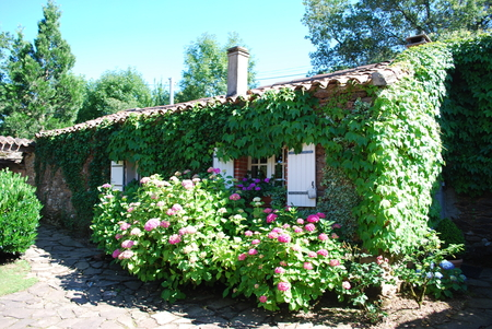 Self Catering Holiday Cottage, Tarn, Midi-Pyrenees, France