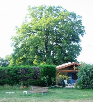 Lot Holiday Cottage with Pool, Between Uzech and Catus, Midi Pyrenees / 19th Century Stone Cottage