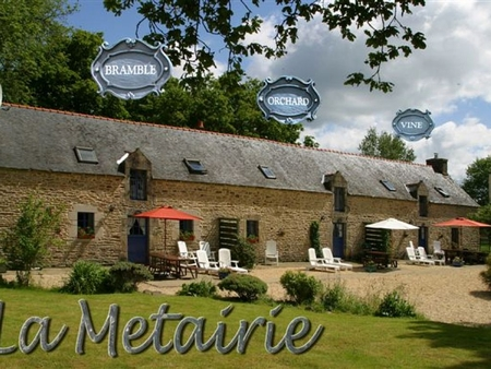Delightful Cottage With Heated Pool In Pluvigner, Camors, Auray, Brittany, France / Vine Cottage