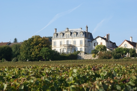Superb Burgundy Holiday Chateau with Private Heated Pool, France / CHATEAU DE MERCUREY