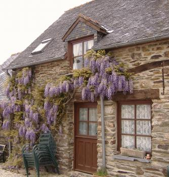 Gite to rent in Brittany, Cotes d`Armor, France ~ Lavendar Gite