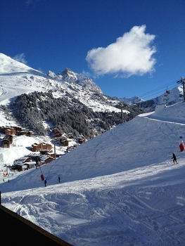 Holiday Chalet Rental in Meribel-Mottaret, Savoie, France