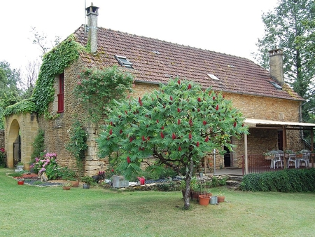Charming Dordogne Holiday House with Pool and Wellness Area, France