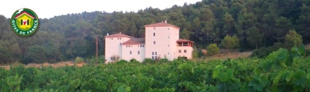 Aude Holiday Cottages to rent in Corbieres vineyards, Languedoc, France - GITE SYRAH