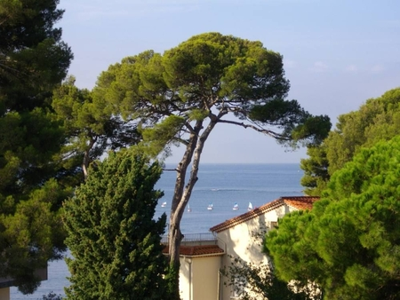 One bedroom Holiday Apartment Rental in Carqueiranne, France