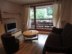 Lovely Samoens Apartment Close to Ski Lifts - RESIDENCE THE RHODOS