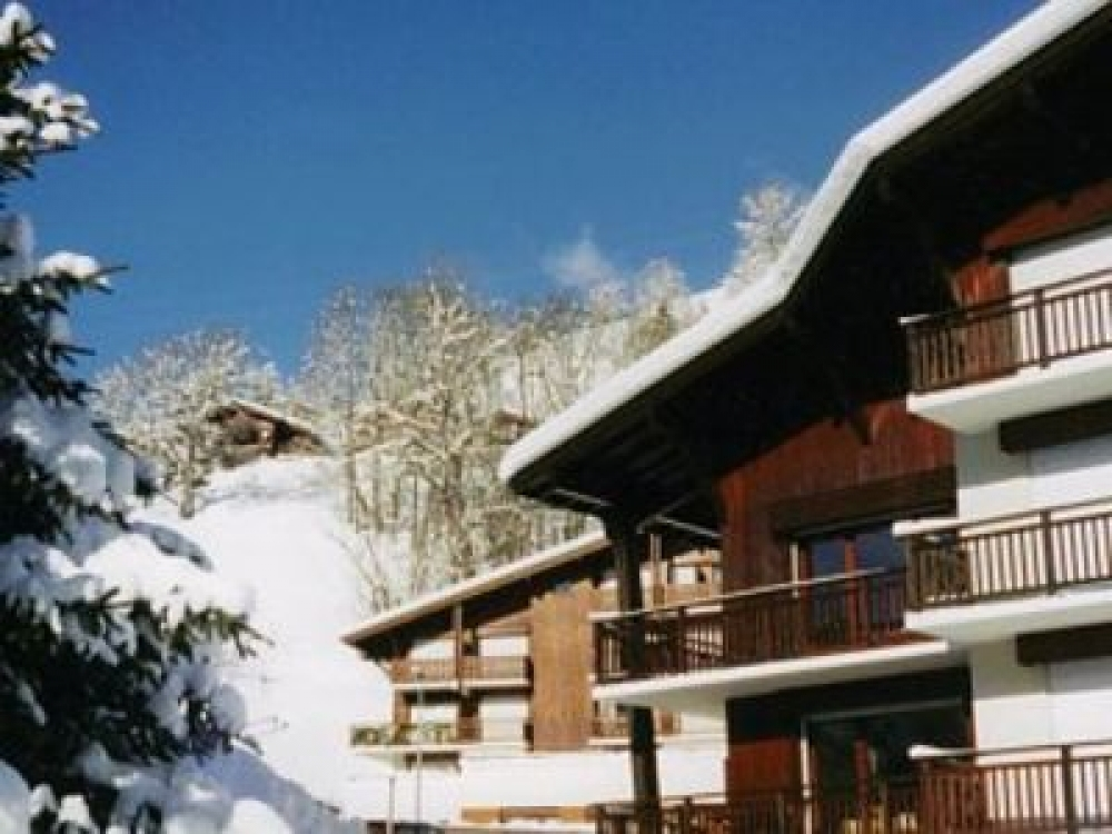 Spacious First Floor Apartment located in Praz-sur-Arly, 4km South of Megeve