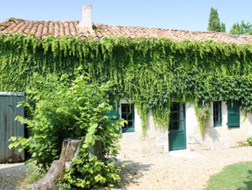 Traditional French Gite Situated on the Charente/Dordogne Border, Le Manoir de Longeveau - Le Four a Pain