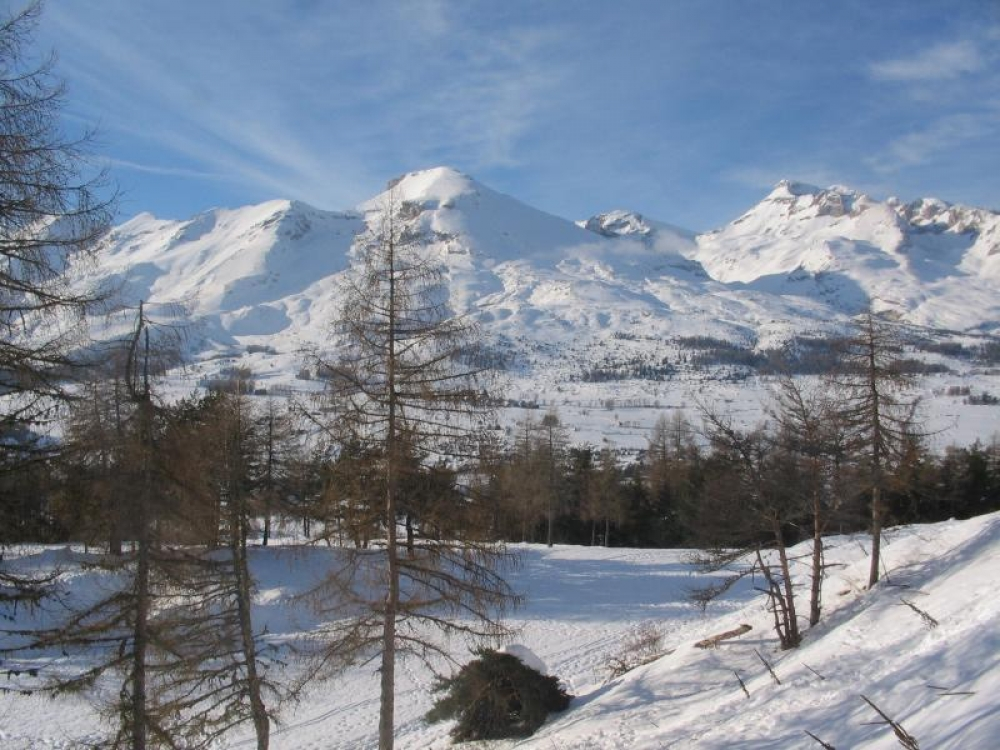 Peaceful and Beautifully Furnished Chalet Le Chamois close to Joue du Loup in the Hautes-Alpes