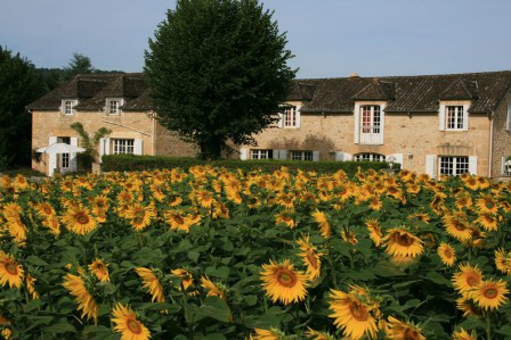 Domaine des Hirondelles - small, family holiday park. Beautiful house le Merle