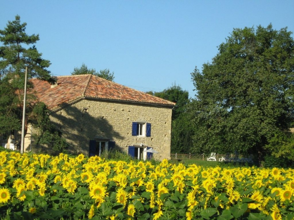 Beautifully Converted Barn With Private Pool and Stunning Views - Saint-Puy, Gers, Pyrenees