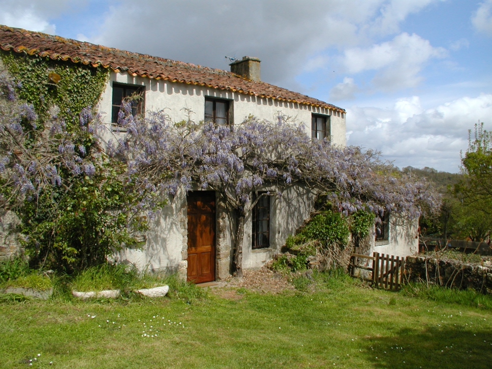 Lovely Cottage with Large Shared Pool in Le Champ-Saint-Père, Vendee - Maison Botineau