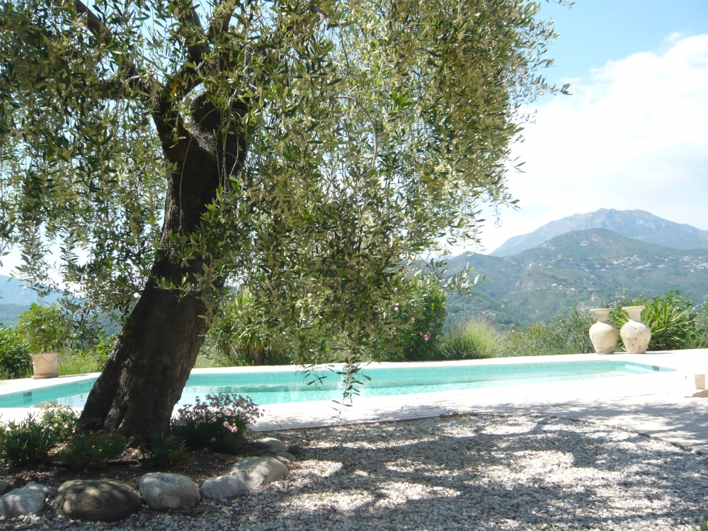Villa with Secluded Private Pool and Stunning Mountain Views in La Roquette-sur-Var, Alpes-Maritimes - Villa Vue Tranquille