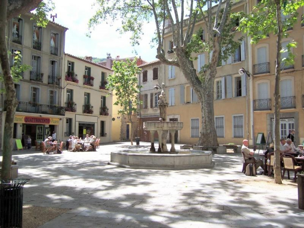 Ground floor apartment with private garden in the heart of Céret Pyrénées Orientales