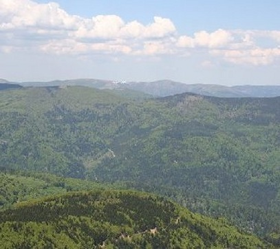 The Vosges Mountains